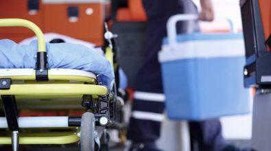 Procurement organi, l'Asp di Vibo promuove un incontro con Aned, Crt e Aido