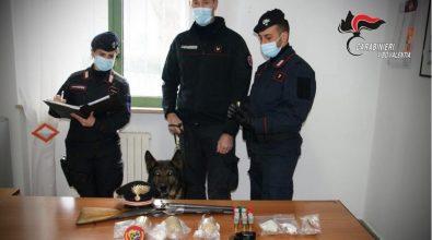 Il cane fiuta armi e bombe carte in casa: arrestato un giovane di Simbario