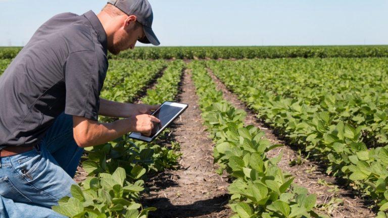 Innovazione in agricoltura, sinergia tra Gal Terre vibonesi e Università di Reggio Calabria