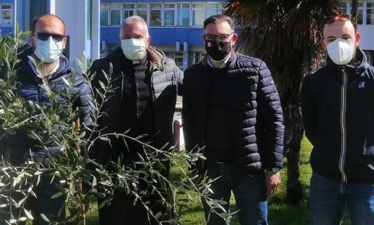 All'ospedale di Lamezia il Giardino della Memoria realizzato dall'Associazione Valentia