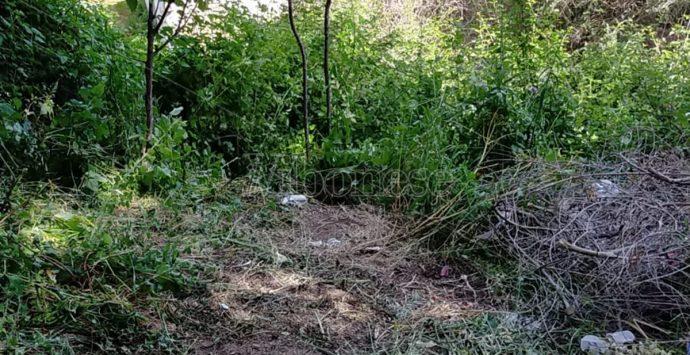 Tragedia a Cessaniti: anziano precipita in un burrone e muore