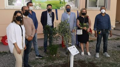 A Tropea il ventesimo giardino della memoria per le vittime del Covid