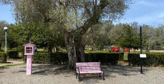 Vibo Valentia, al Parco urbano torna la mini biblioteca rosa