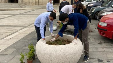 Vibo, l'associazione Valentia riqualifica piazza San Leoluca
