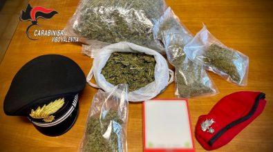 Marijuana a Nicotera, scarcerato l'indagato arrestato dai carabinieri