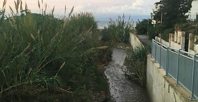 Torrente Sant'Anna a Bivona, Soriano (Pd) chiede maggiore attenzione