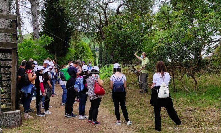 Appuntamento con la natura, successo per la Festa delle oasi Wwf all'Angitola