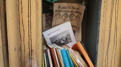 """Pizzo, """"Pathos"""" di Vito Teti nel """"bucu du book"""": la meraviglia e il commento dell'autore"""