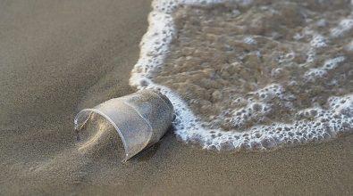 Rifiuti in spiaggia, nuova tappa Plastic free a Parghelia