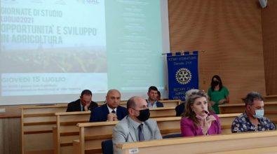Agricoltura: orizzonti europei e politiche di sviluppo a Vibo, giornata di studio del Roraty