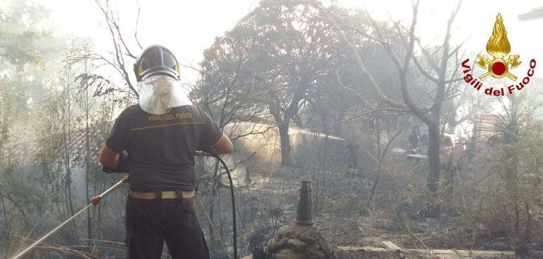 Oltre 25 gli incendi nel Vibonese nelle ultime ore, ingenti i danni