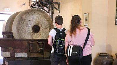 Ricadi, il Comune cerca tre volontari per la promozione del museo