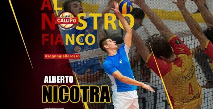 Volley, nuovo innesto per la Tonno Callipo: arriva lo schiacciatore Nicotra
