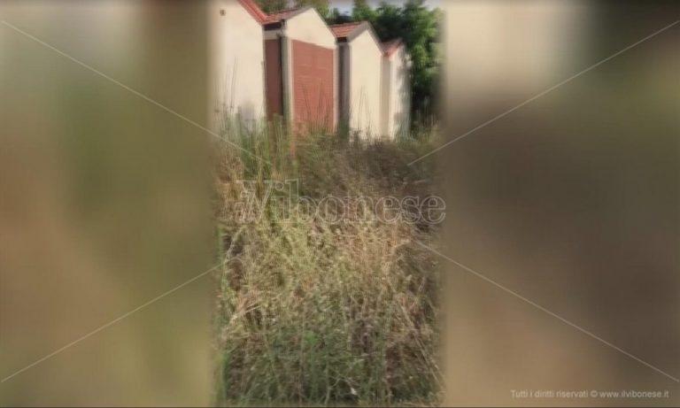 """Il cimitero di Bivona """"seppellito"""" da rovi e sterpaglie: la denuncia di Patania -Video"""