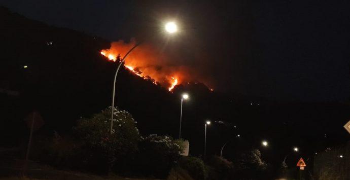 Incendio sulla collina tra Maierato e Pizzo, la condanna del sindaco Limardo
