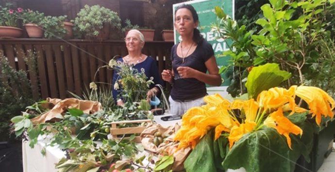 """Al """"Serreinfestival"""" la botanica si sposa con la cucina – Video"""