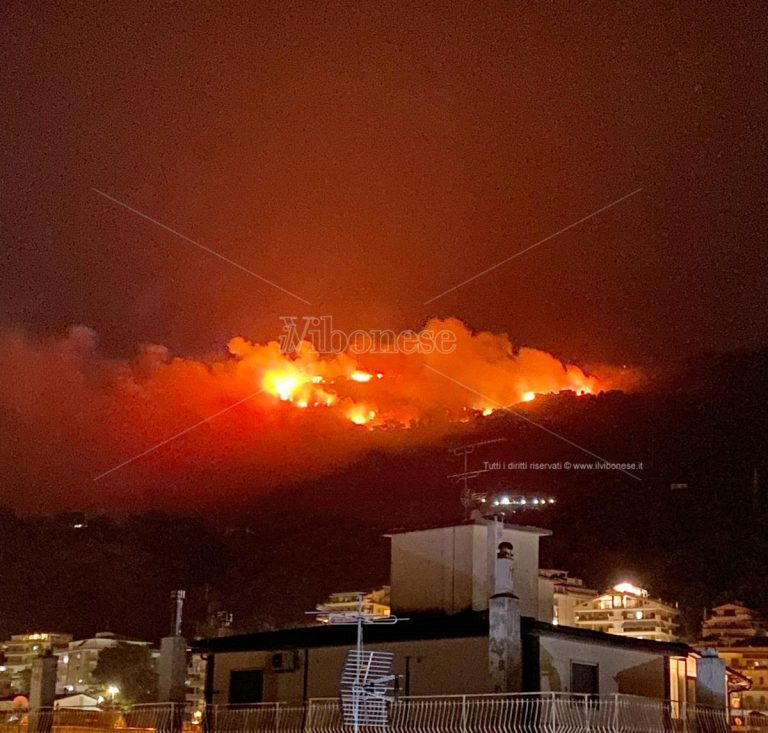 Il Vibonese travolto dalle fiamme, oltre 35 gli incendi nelle ultime 24 ore – Video