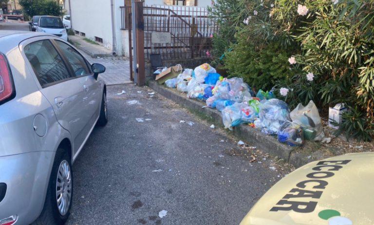 """Rifiuti, blitz contro i """"furbetti"""" della differenziata a Vibo Marina e Bivona: fioccano multe"""