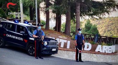 A calci e pugni al portone della stazione dei carabinieri: due arresti nel Vibonese