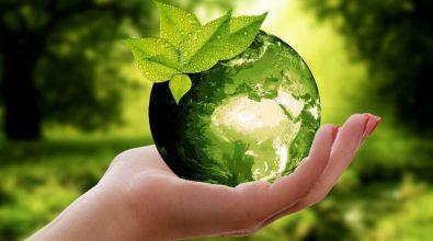 Dottori agronomi e forestali, eletto il nuovo consiglio dell'Ordine di Vibo