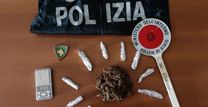 Vibonese, trovata marijuana in una intercapedine: denunciato 34enne