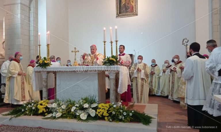 Don Francesco Mottola proclamato beato, la chiesa calabrese in festa – Video