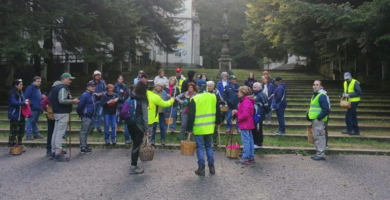 Successo dell'ottava edizione della Festa del Fungo di Serra San Bruno