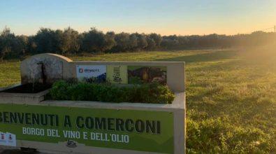 Nicotera, primo passo per la realizzazione di un campo da calcio a Comerconi