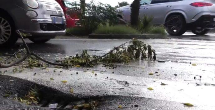 Maltempo in Calabria, pioggia record nelle Serre vibonesi: i dati Arpacal